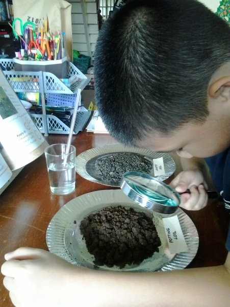 Examining different types of soil