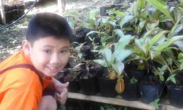 Visit to the Pitcher Plant Farm